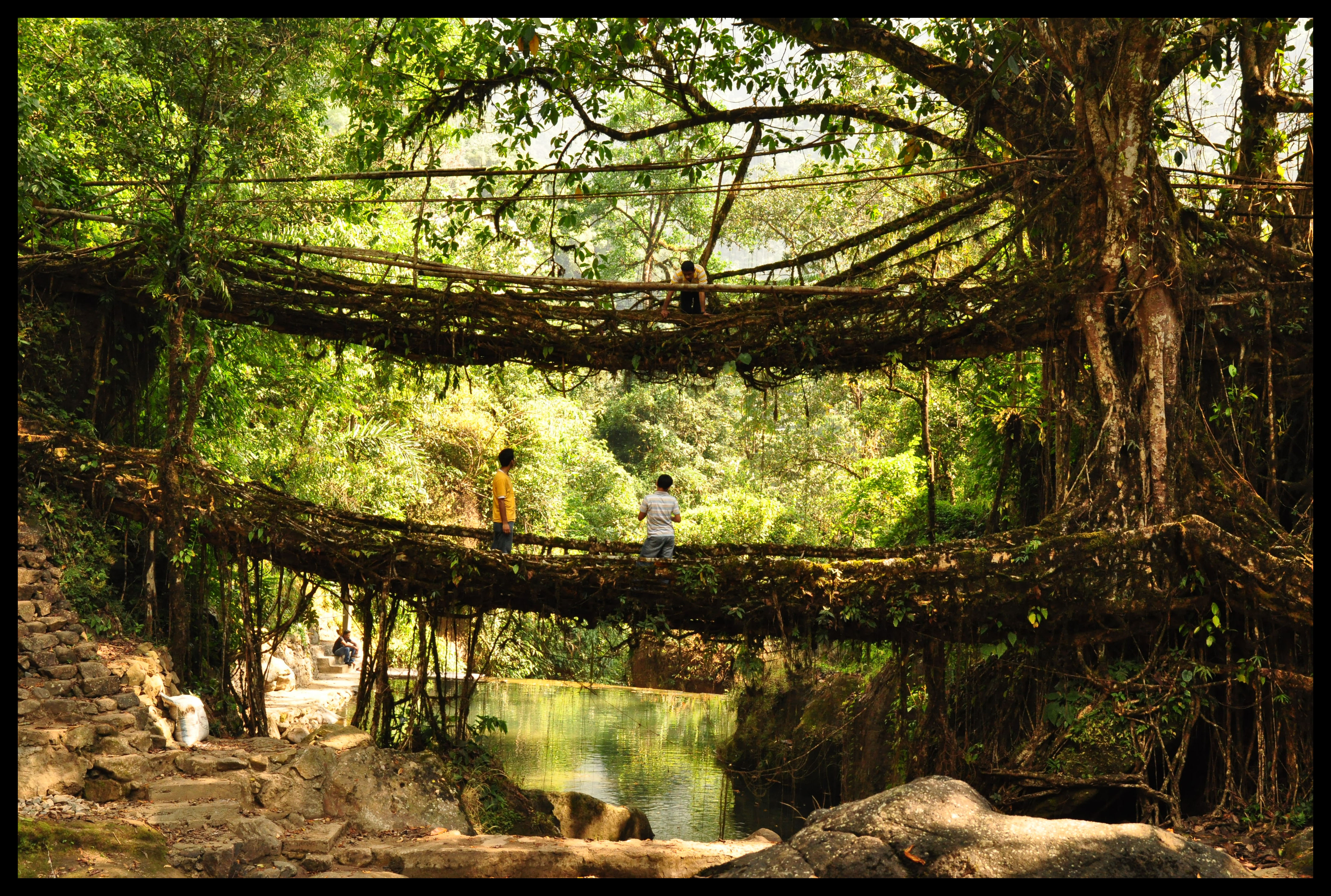 Meghalaya places to visit in India