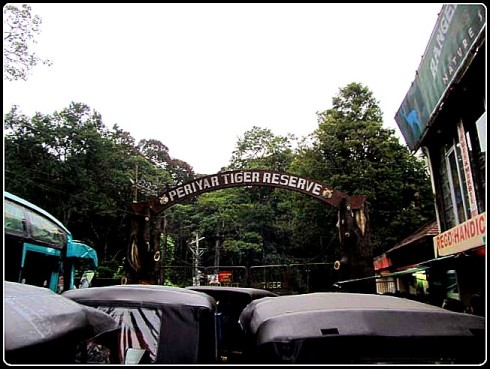 Traffic jam at the Periyar Tiger Reserve entrance gate